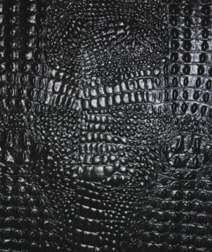 Black Gator Print