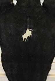 Bull Rider Stingray