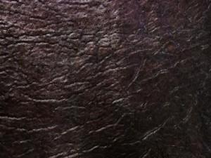 Nicotine Elephant