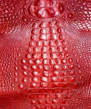 Red Gator Print