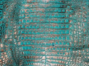 Turquoise Bronze Caiman